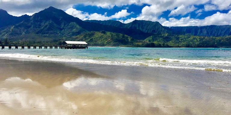 Our 2016 Hawaii Video - Kauai - 4K Drone Footage