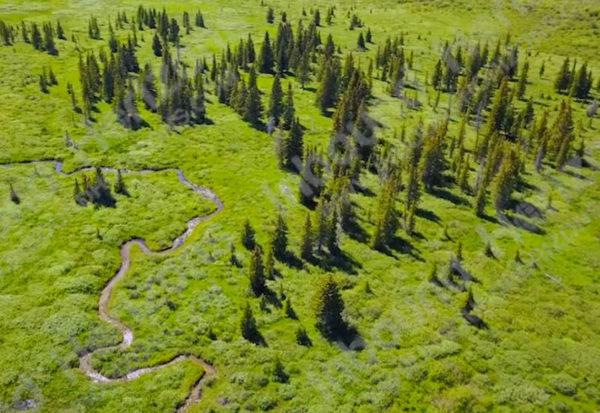 Wyoming-4K-006-Stream